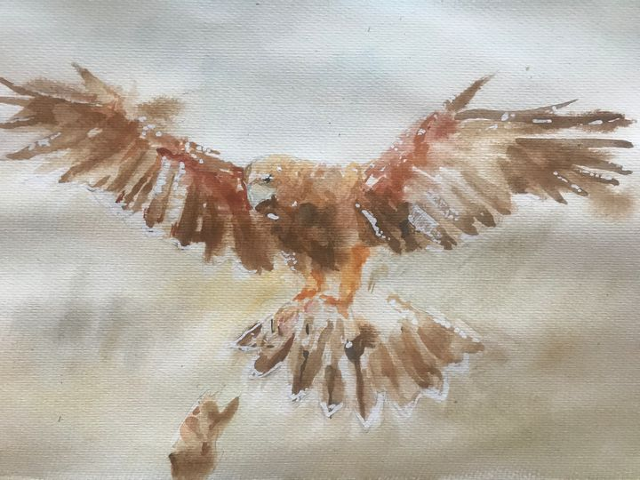 Falcon - Fernando Jaramillo art
