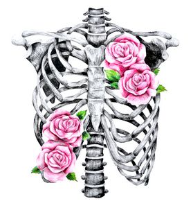 Ribs and Roses