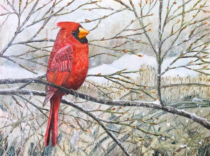 Cardinal in winter - The Artful Codger
