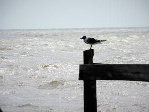 Coden Beach