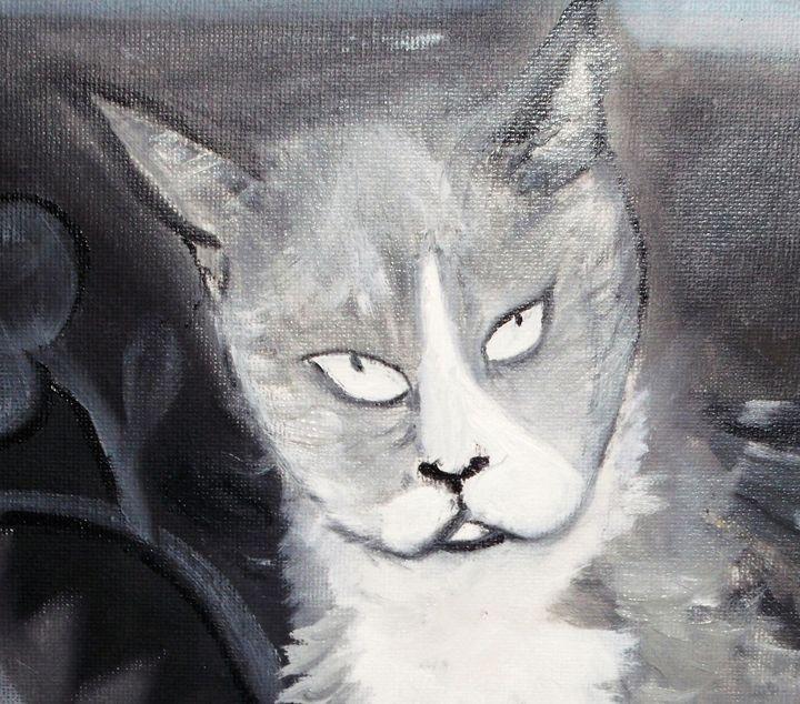 GREY KITTY - ART BY LES