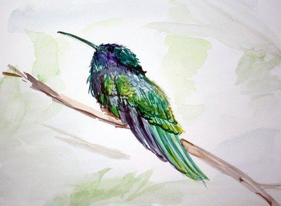 humming bird - GParker Artworks
