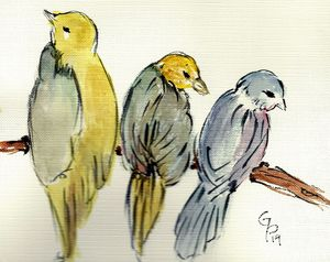 Three watercolor birds