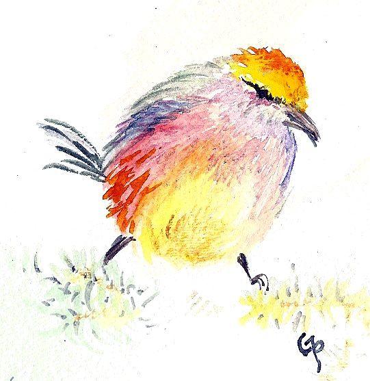 Rainbow bird - GParker Artworks