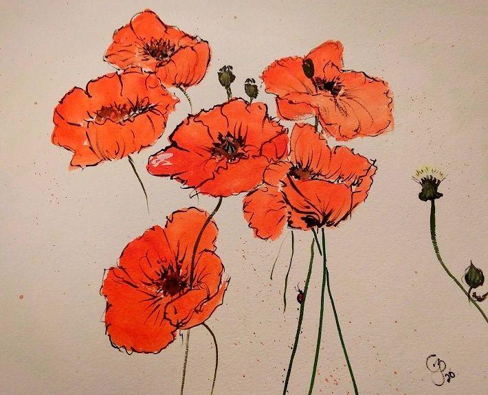 Field Poppies watercolor - GParker Artworks