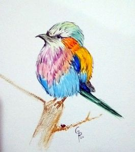 watercolor of rainbow bird 2