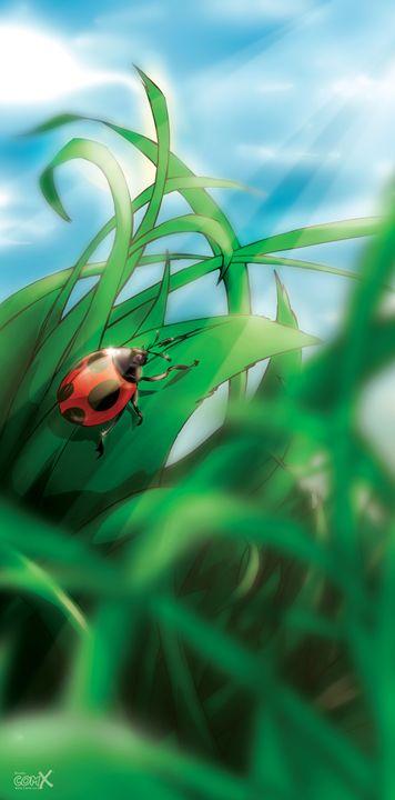 Ladybug - Studio ComX