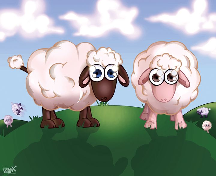 Sheep on pasture - Studio ComX