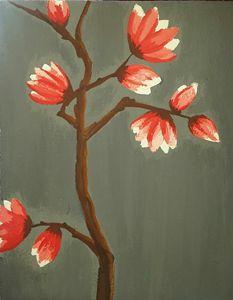 blossom of magnolias