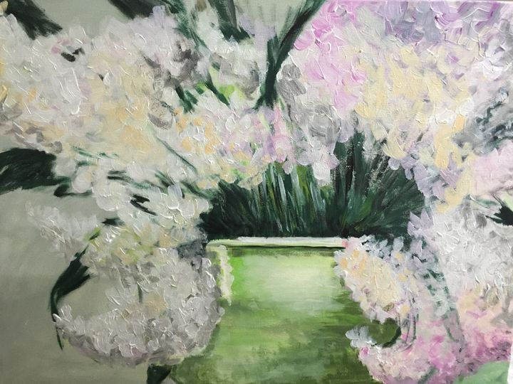 Hydrangea - Jane