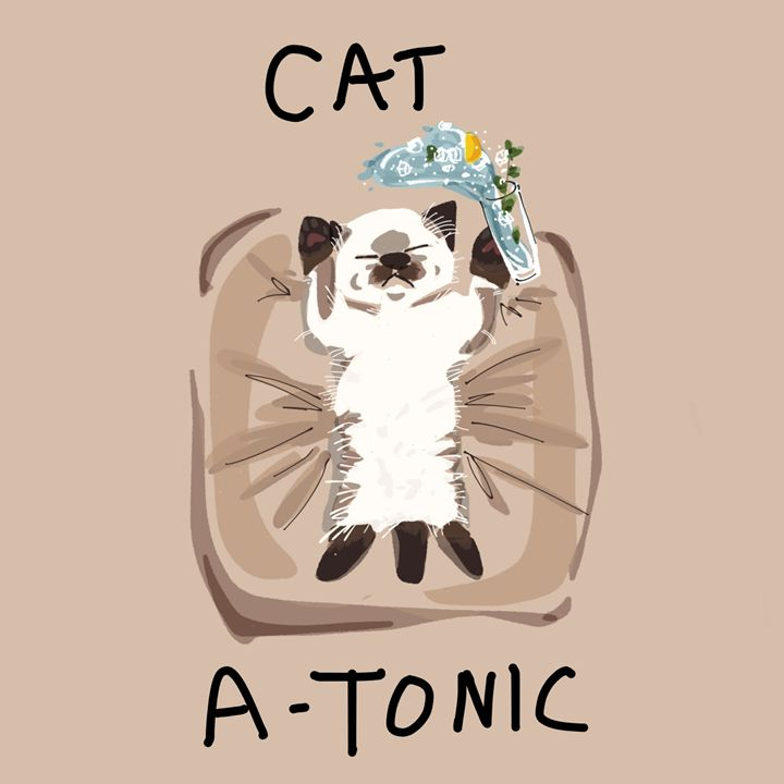 CATatonic - dailycatfeine