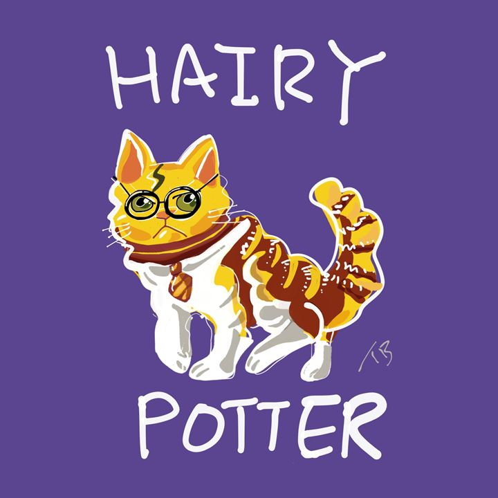 Hairy Potter - dailycatfeine