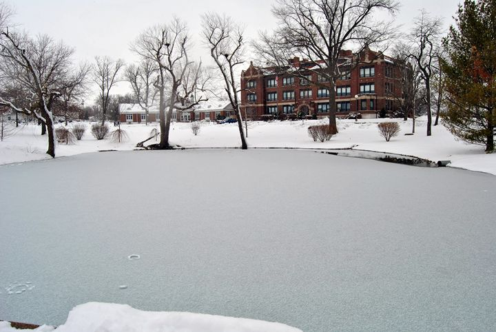 Frozen - Clark Photography