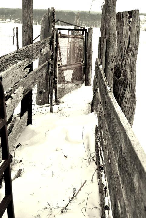 Livin on the farm - Clark Photography