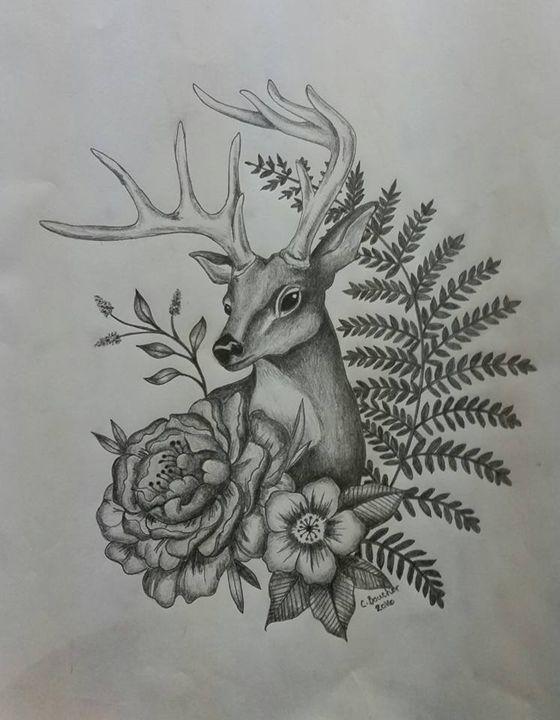 Deer - Courtney Boucher