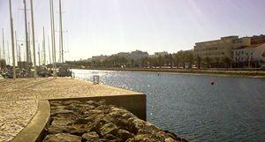 Dock Avenue
