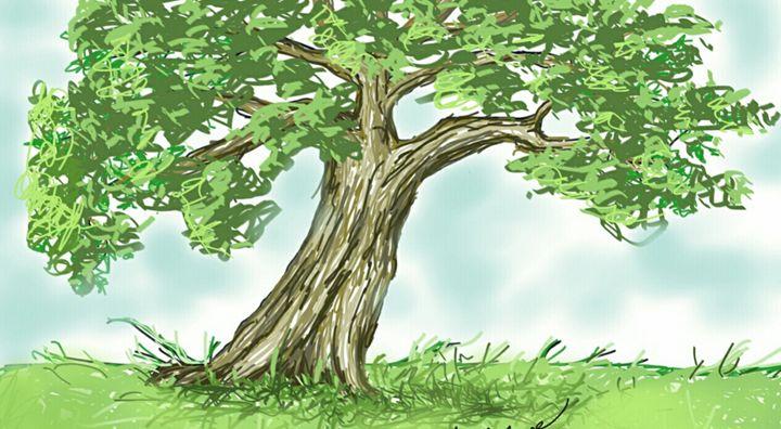 Tree Time - David Phillippe