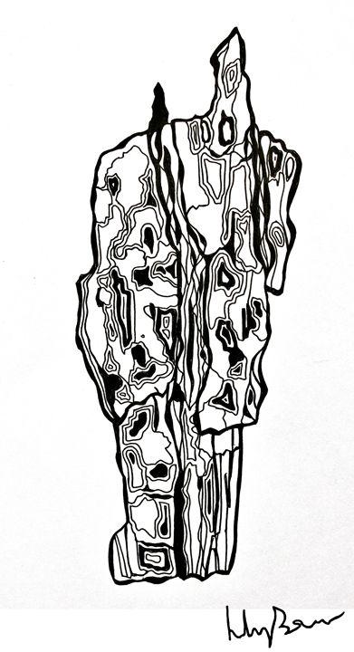Bark Drawing - Lily Bowler Art