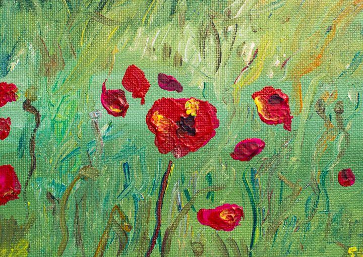 Poppy 50 - 100poppies100days