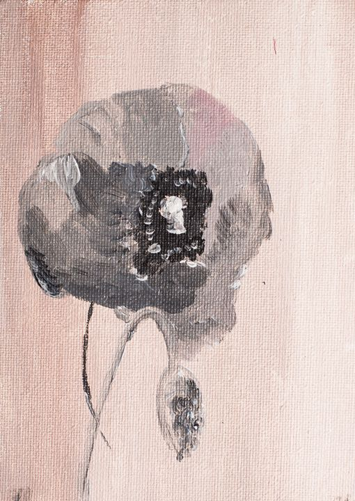 Poppy 84 October 27th 2014 - 100poppies100days