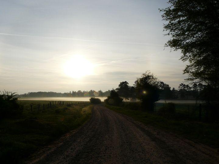Morning light - Rita Walters Adams