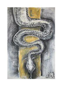 035 snake