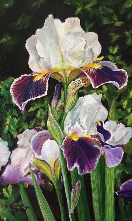 Irises - Anastasiya Kharchenko
