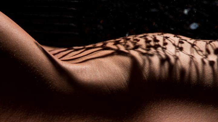 grid shade on female nude body detai - Dalibor Balic