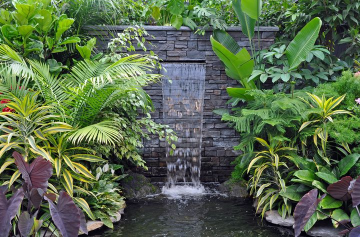 Tropical waterfall - Perl Photography