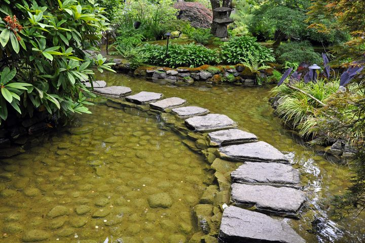 Japanese garden pond - Perl Photography