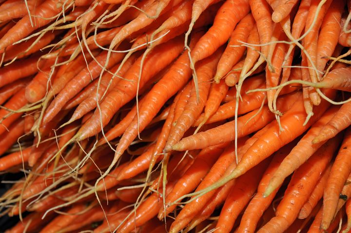 Fresh carrots - Perl Photography
