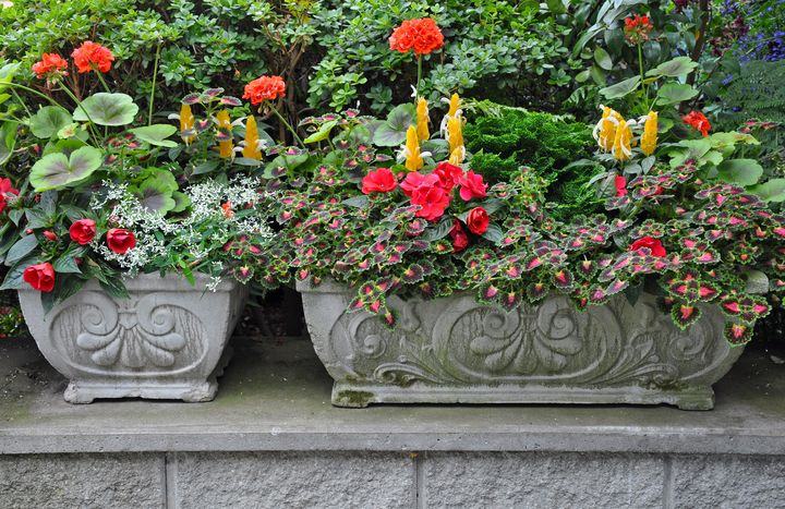 Stone flower planters - Perl Photography