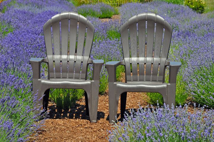 Lavender chairs - Perl Photography