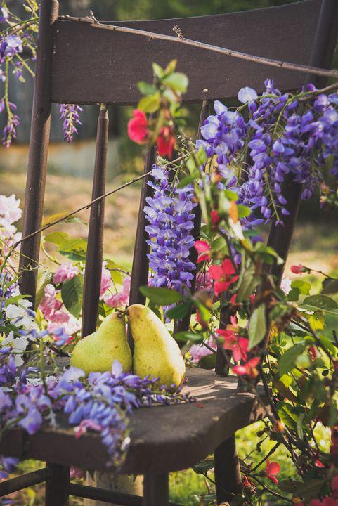 Pear of Lovers in the Spring - Jodie Morgan