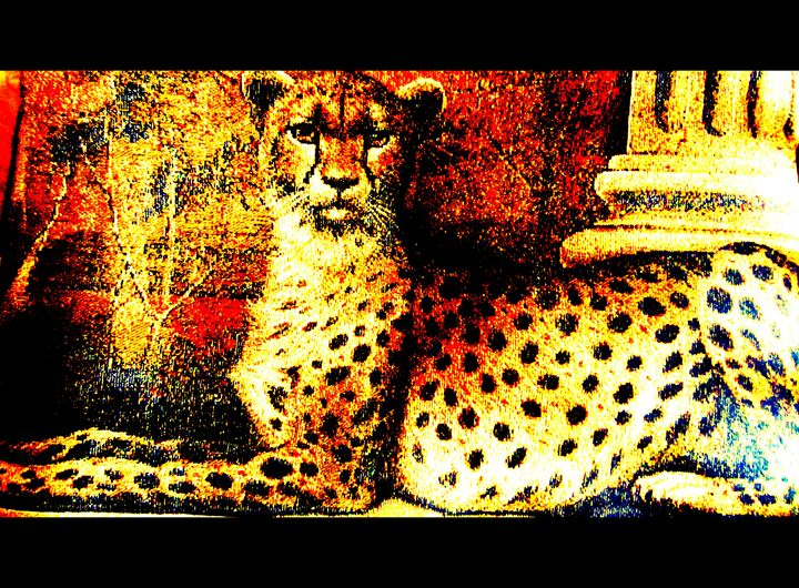 Regal Leopard - Expressive Images