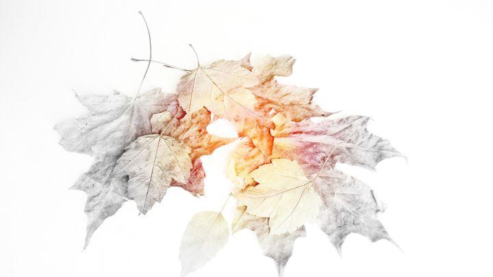 fading away - Artsiesfm