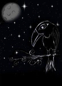 bird in noir - odd art