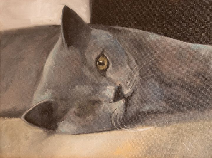 Oil painting Cat - ZhannaZakharchenko