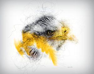 Eagle lines
