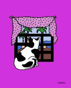 WINDOW SHOPPING CAT