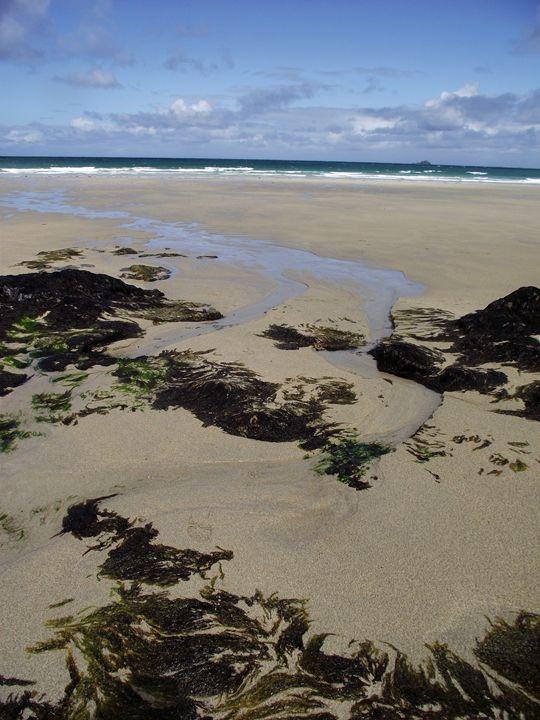 Seaweed, sand and surf - Maili J McQuaid