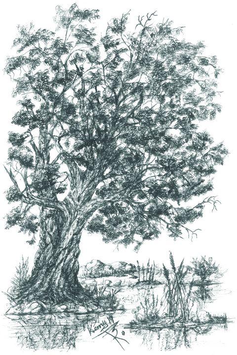 Oak on shore! - themontanascribbler