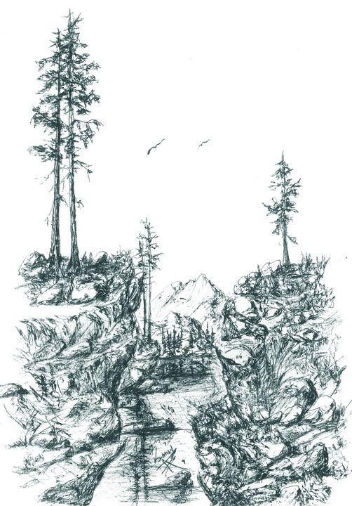 Eagles over canyon - themontanascribbler