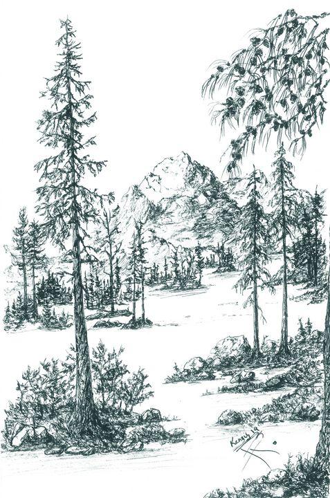 Pine limb over scenery! - themontanascribbler