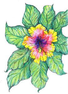 'Imaginary fantasy flower'