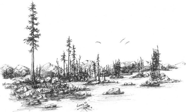 Eagles over forest! - themontanascribbler
