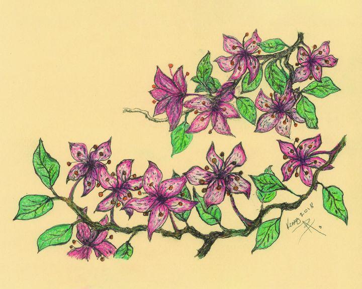 Blossoms - themontanascribbler