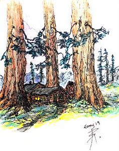 cabin in the red woods