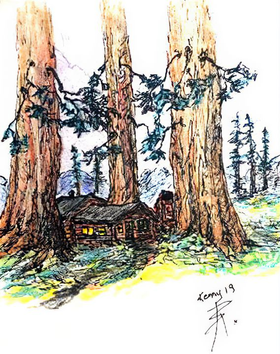 cabin in the red woods - themontanascribbler