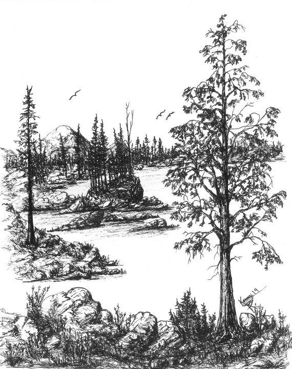 Montana mountain lake shore! - themontanascribbler